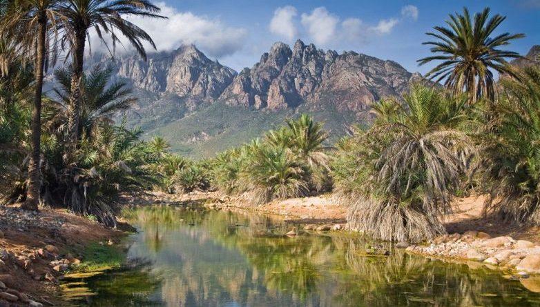 Экзотические пейзажи сказочного острова Сокотра, после которых хочется стать Робинзоном Крузо