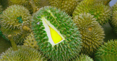 Дуриан − одна из причин посетить Малайзию