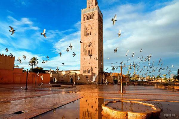 Удивительные факты о стране Марокко