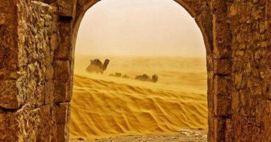 Интереснейшие факты о Тунисе