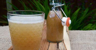Домашнее имбирное пиво по‑старинному (имбирный лимонад)