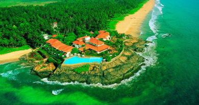 Шри-Ланка — интересные факты для путешественников