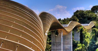 Мост Henderson Waves Bridge Сингапур