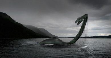 Ученые занялись поиском ДНК «лох-несского чудовища»