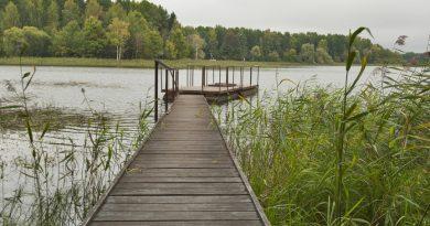 Озера Подмосковья: самые популярные маршруты отдыха жителей столицы