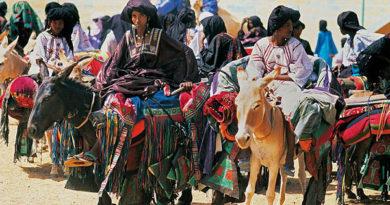 Где кочуют туареги