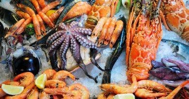 Интересные факты о морепродуктах