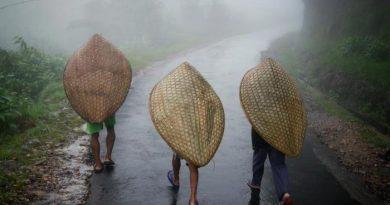 Самое дождливое место на планете