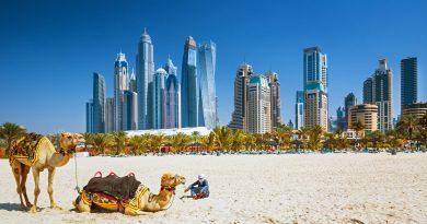 18 интересных фактов о Дубае и ОАЭ