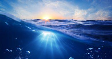 15 шокирующих фактов об океане, которых вы не знали