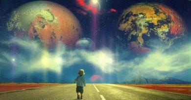 Удивительные факты об окружающем мире