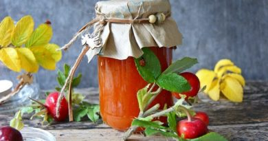 Варенье из красной рябины с медом