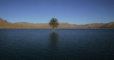 Африканская пустыня 5 тысяч лет назад