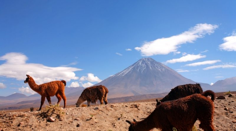 8 уважительных причин провести отпуск в Чили