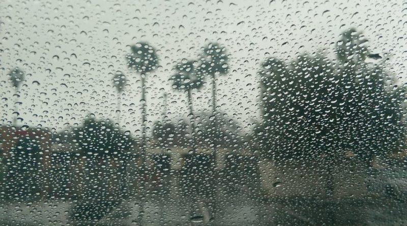 Как защитить стекла окон от урагана, бури или камней