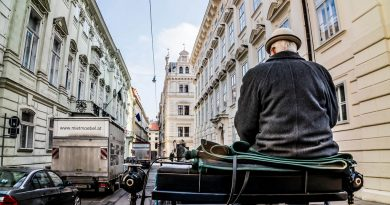 Что стоит сделать в Вене