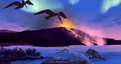 Тайны и открытия, связанные с вулканами