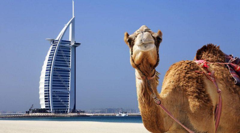Что категорически запрещено делать в Дубае?