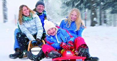Лучшие идеи для новогодних каникул с детьми