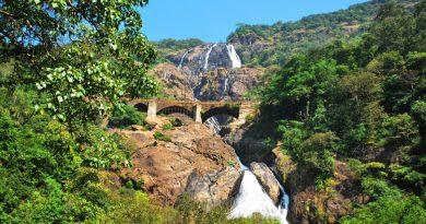 Отпуск в Индии: что посмотреть в Гоа?