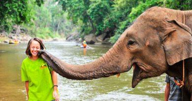 8 вещей, которые лучше не делать в Таиланде