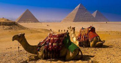 50 интересных фактов о Египте