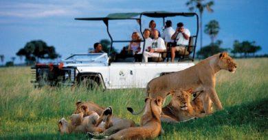 О чем важно помнить туристам в поездках по странам Африки