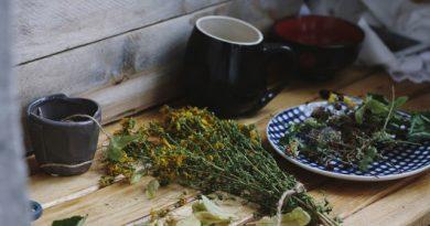 Лучшие травы для омоложения организма