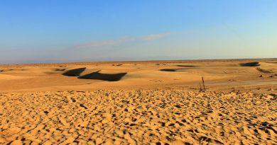 Сахара: путешествие по пустыне