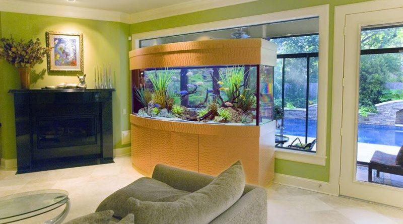 5 идей куда поставить аквариум в маленькой квартире.