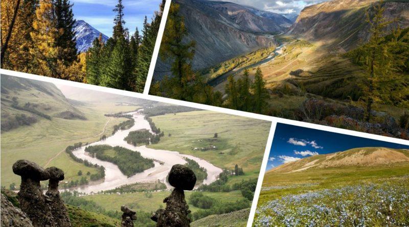 4 причины поехать на Алтай