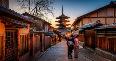 Когда туристам лучше всего посетить Японию?