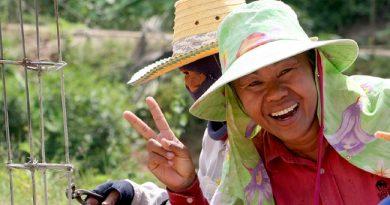 5 особенностей поведения которые нужно учесть при общении с тайцами