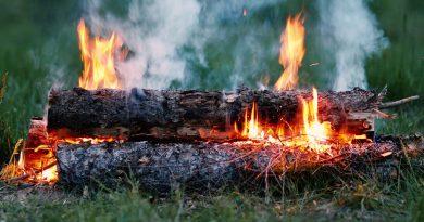 Популярные виды костров в лесу