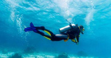 Дайвинг. Как вести себя под водой, чтобы избежать рисков