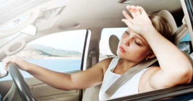 10 полезных советов водителей, чтобы легче пережить летнюю жару
