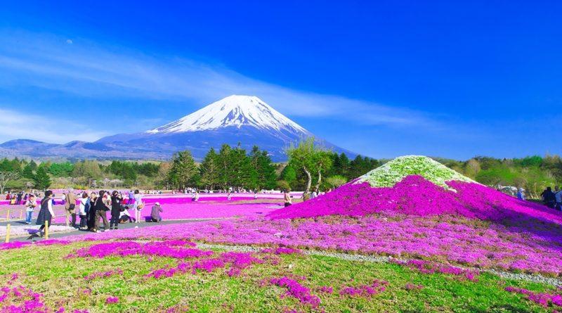 Чем Япония может удивить даже самого заядлого путешественника