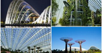 Великолепие оранжерей Сингапура.