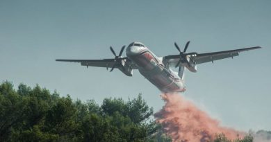 Ураганный ветер мешает тушить сильнейшие пожары в Калифорнии