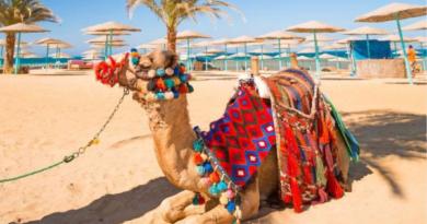 Новый год в Египте: чартеров не дождемся?