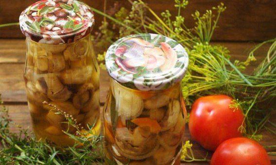 Шампиньоны маринованные с морковью и луком