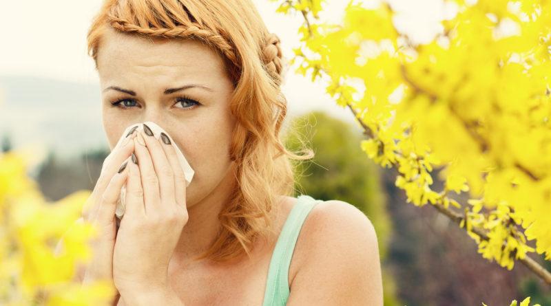 4 подходящих туристических направлений для тех, кто страдает сезонной аллергией