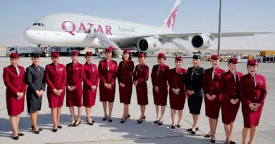 Топ 5 самых лучших авиакомпаний мира и чем они прославились