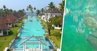 5-звездочный отель в Керале сделал в бассейне рыбную ферму