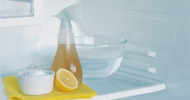 11 нейтрализаторов запаха для холодильника
