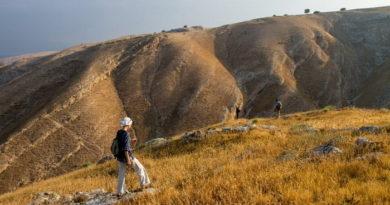 5 причин пройти «путь Авраама» — туристический маршрут, ставший культовым