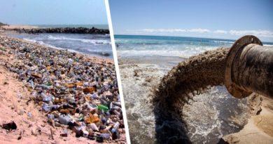В ООН назвали наиболее грязное море в мире