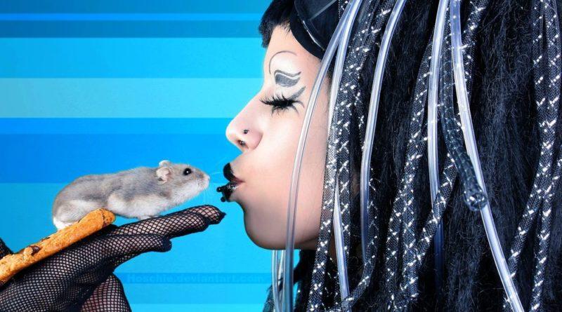 Почему французы так любят мышей