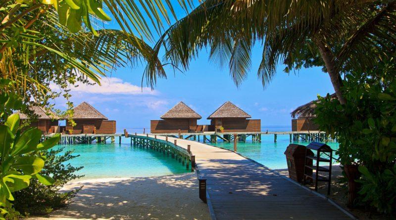 Записки стюардессы! Как всего 2 командировки на Мальдивы, отбили у меня желание отдыхать там?