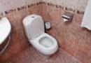 Как в Канаде путают урну с туалетом и какие тут зарплаты у сантехников